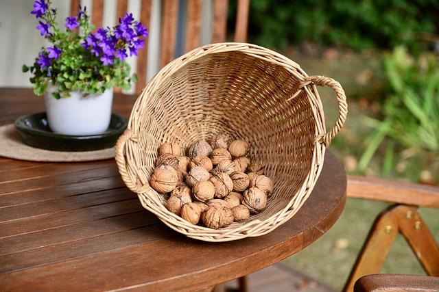 vlašské ořechy v proutěném košíku